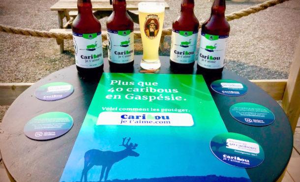 Lancement d'une bière pour soutenir les derniers caribous en Gaspésie